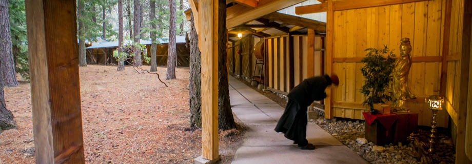 mount shasta buddhist singles Refuge retreats are open to those who have attended retreats at shasta abbey or at a temple of the order of buddhist  shasta abbey buddhist monastery,.