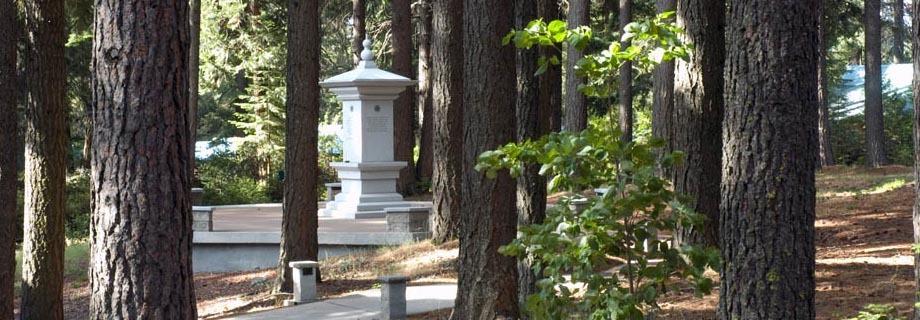 StupaInTrees